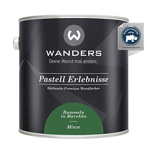 Wanders24® Pastell Erlebnisse (2,5 Liter, Minze) edelmatte Wandfarbe - Feine Farben - in 40 Farbtönen - Wandfarbe Grau - Made in Germany