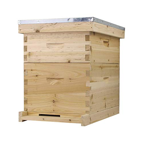 Starter Bee Hive with Frames & Wax Coated Foundations (NU8-1D1M)