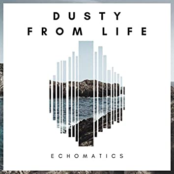 Dusty From Life