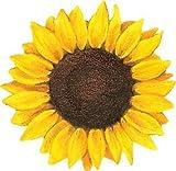 MR3Graphics Magnet Sunflower Magnetic Car Sticker Decal Bumper Magnet Vinyl 5'