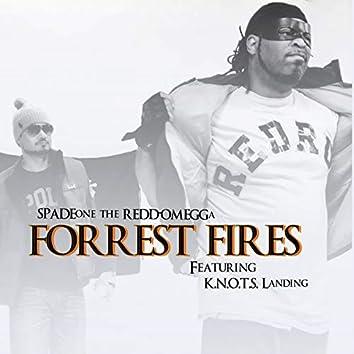 Forrest Fires