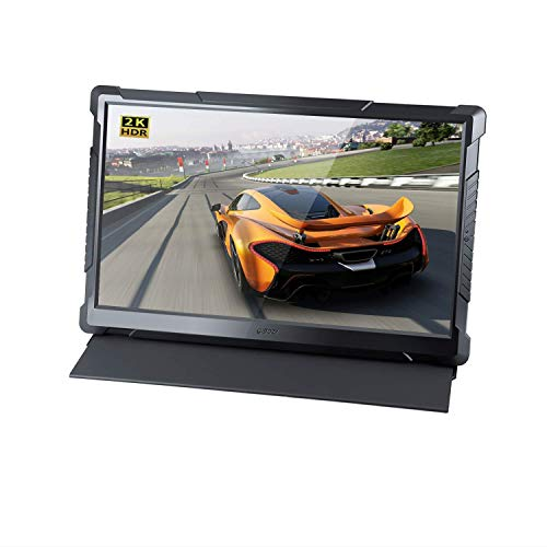 G-STORY 17.3 Inch HDR 120Hz 1ms QHD 1440P Eye-Care Portable Gaming Monitor, TN Panel, with FreeSync, Type-C, HDMI Cable, Built-in Speaker, Remote, UL Certificated AC Adapter