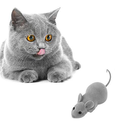 Mouse Racer, Wireless App Fernbedienung RC Elektronische Ratte Mouse Mice Racer Toy, leicht zu tragen, Telefon APP Control