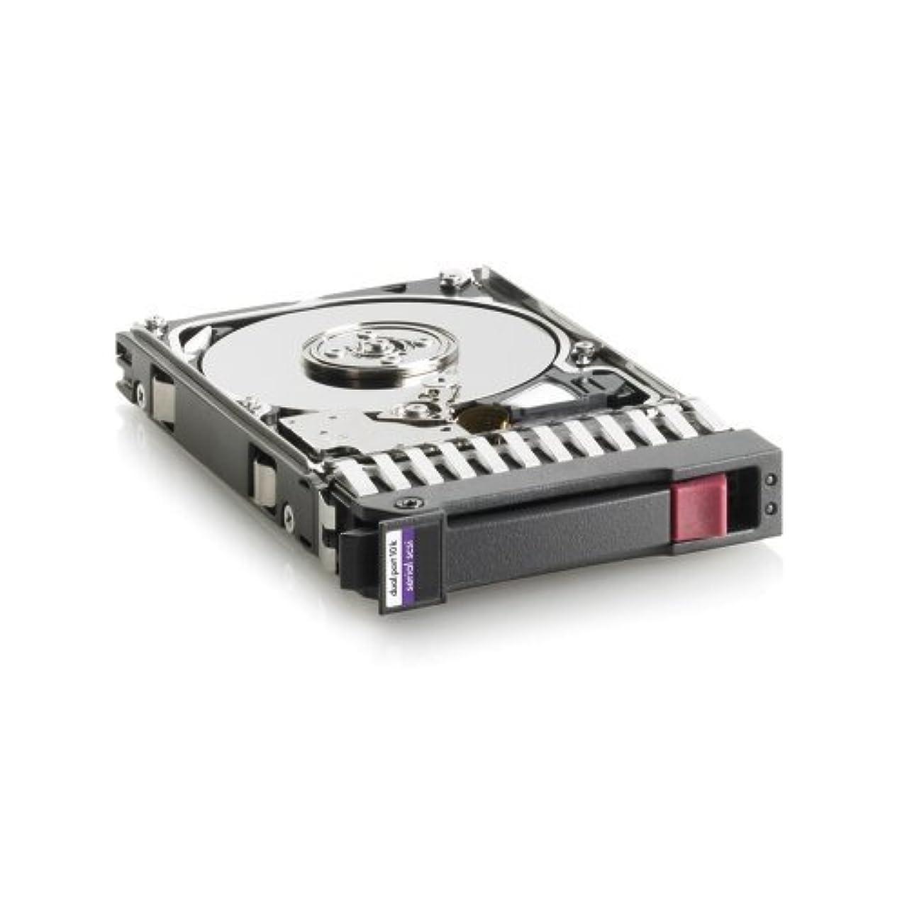 HP 418399-001 HP 146GB 10K DISK 2-PORT SAS-300 2.5IN (418399001)