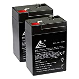 ExpertPower 6 Volt 4.5 Amp Rechargeable Battery (EXP645) 2 Pack