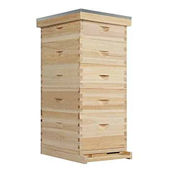 MorNon Wooden Langstroth Honey Bee Hive Box Beehive House Honey Keeper with Metal Roof Without Frames 5-Layer