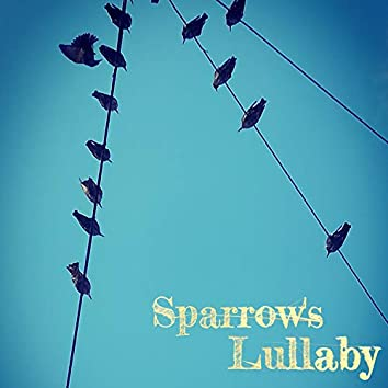Sparrow's Lullaby