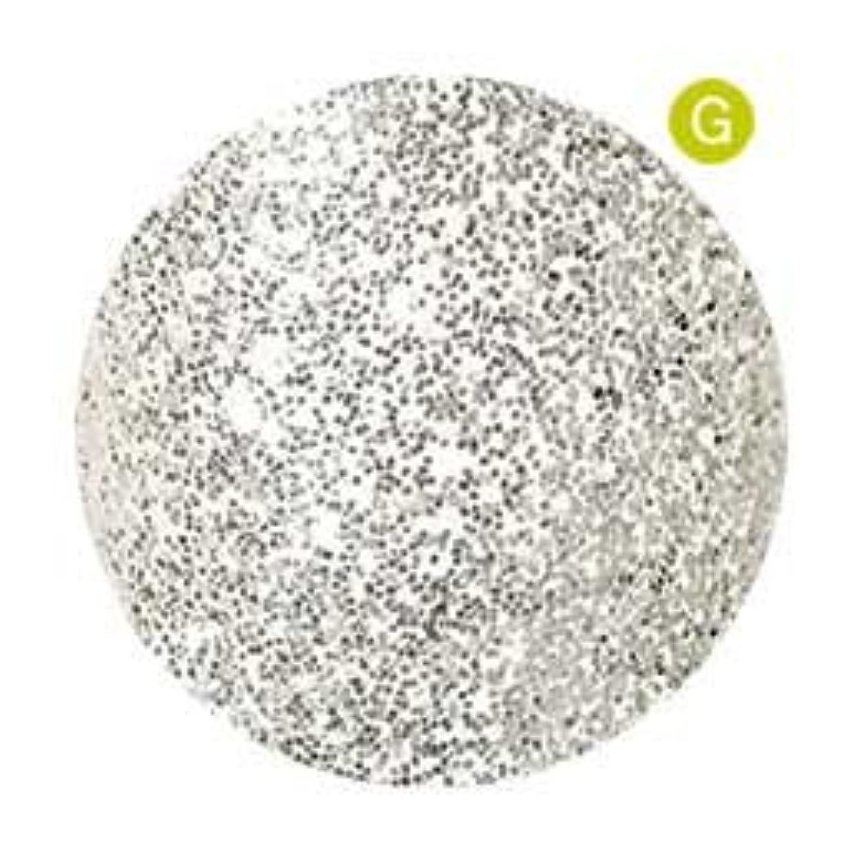 無意識バレーボール偏見Palms Graceful カラージェル 3g 038 ホワイトシルバー