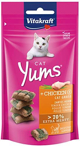Vitakraft Cat Yums Huhn & Katzengras, 1er Pack (1 x 40 g)