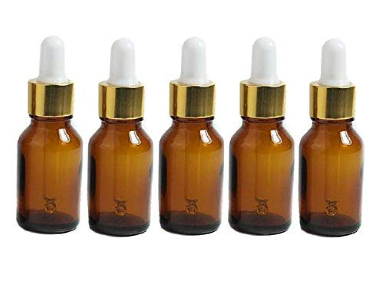 一流のホストサミュエル6PCS 15ml Mini Amber Glass Via With Pipette Dropper Bottles Aromatherapy Essential Oil Refillable Dropper Bottles Empty Bottle With Black Caps Round Eye Dropper Glass [並行輸入品]
