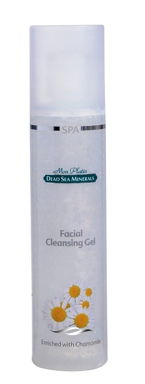 苦い帰するテンポ洗顔ジェル 250mL 死海ミネラル Facial Cleansing Gel