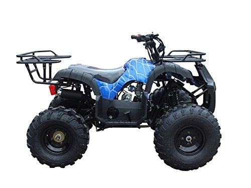 TaoTao ATV TForce 110cc