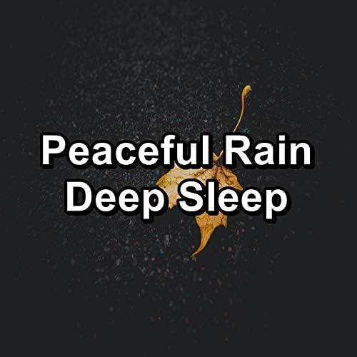 Relaxing Rain Sounds, Rain Sound Studio & Thunderstorm Sleep