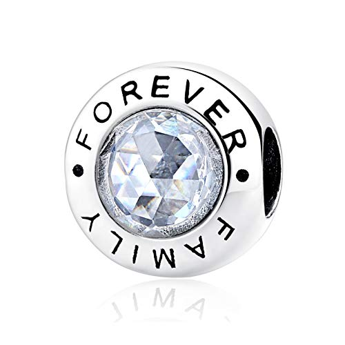 NINGAN Family Forever Charm 925 Sterling Silver Clear CZ Bead Fits European Bracelets (Family Forever)