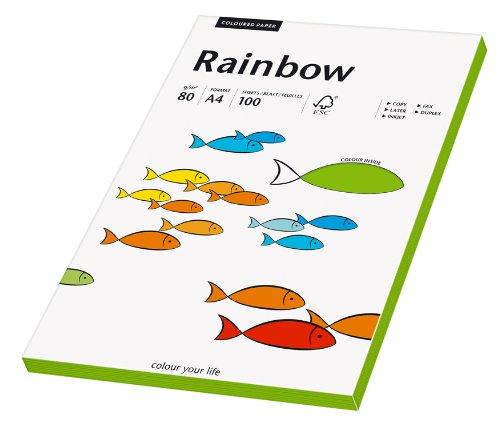 Papyrus 88042675 Druckerpapier Rainbow 80 g/m², A4 100 Blatt intensivgrün