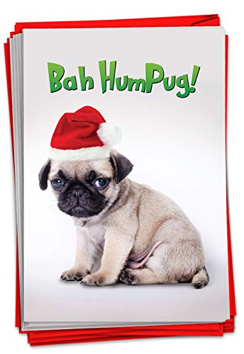 NobleWorks - Box of 12 Dog Christmas Cards Funny - Fun Adorable Pet Dogs, Animal Holiday Greetings with Envelopes (1 Design, 12 Cards) - Bah Humpug C7065XSG-B12x1
