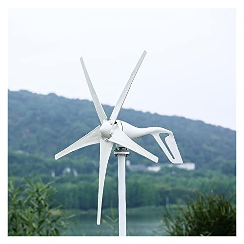 Aerogeneradores Pequeño generador de turbina de viento Ajuste para luces caseras Molino de viento 800W con regalo de controlador de viento Todos los conjuntos Energía solar y eólica