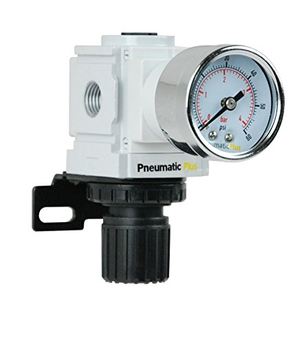 "PneumaticPlus PPR2-N02BG-4 Miniature Air Pressure Regulator 1/4"" NPT - Gauge, Bracket, Low Pressure (3-60 PSI)"