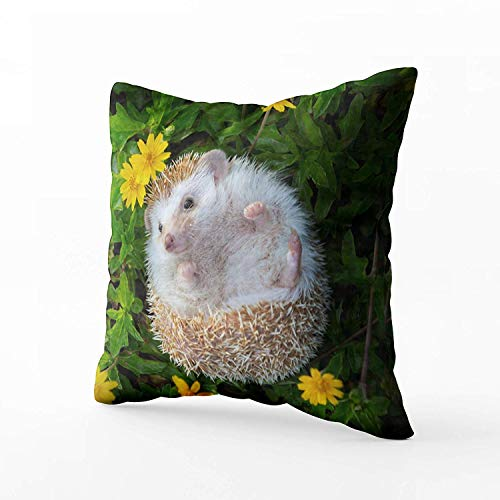 N\A Indoor Outdoor Pillows Covers, Abstract Art European Hedgehog Playing in Flower Square Pillowcase Couch Sofa Inch Throw Cushion Cover