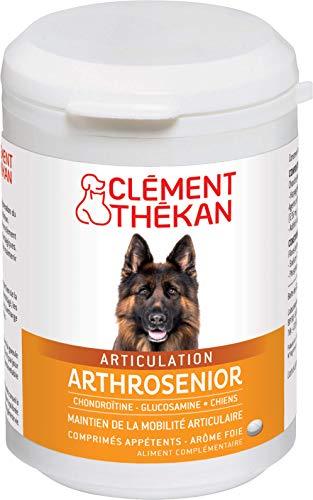 Clément Thékan Arthrosenior Chien - Stimule la régénération du cartilage et aide à la mobilité articulaire chez le chien – 60 comprimés sécables aromatisés au foie
