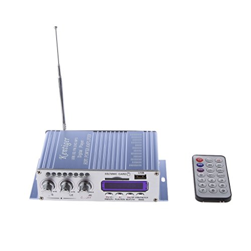 Hy502 Fm Mp3 Altavoz Reproductor de Audio Estéreo de Automóvil Amplificador Hi-Fi