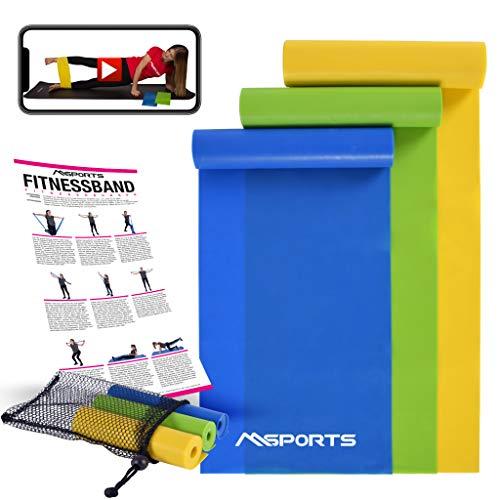 MSPORTS Fitnessbänder 3er Set mit Tragetasche und Übungsposter + Workout App GRATIS - Leicht | Medium | Stark - Fitnessband Trainingsband Gymnastikband