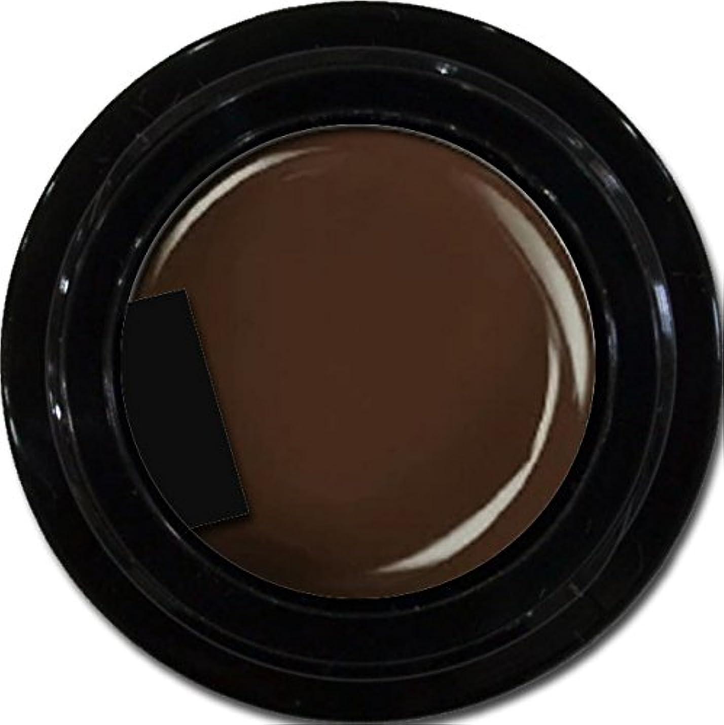 コンパクトまた誤解を招くカラージェル enchant color gel M106 DarkBrown 3g/ マットカラージェル M106 ダークブラウン 3グラム