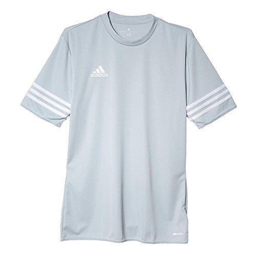 Adidas Entrada 14 JSY, Camiseta Para Hombre, Gris (Silver/White), M, F50493