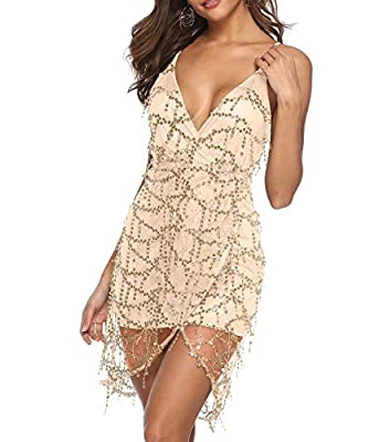 Zshujun 1920s Glitter Fringe Sequin Summer Casual Club Mini Party Dress for Women 2529