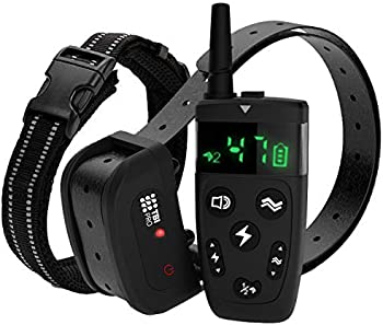 TBI Pro Shock Dogs Collar with Remote