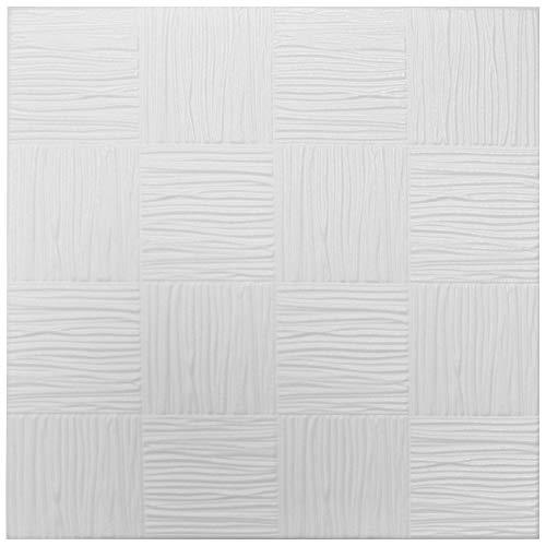 HEXIM n.º 10 - Placas de techo de poliestireno extruido, indeformables, 50 x 50 cm
