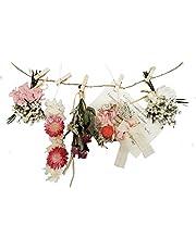 11collectionドライフラワー ローズ&デージーフラワーガーランド 壁掛け 壁飾り 春色 ホワイトピンク 模様替え ディスプレー ナチュラルガーランド 雑貨