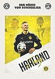 DER KÖNIG VON BUNDESLIGA: Erling Haaland I Borussia Dortmund I Fußball-Notizbuch