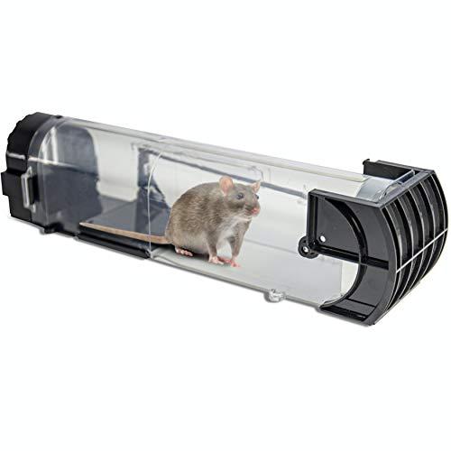 riijk Trappola per Topi Grandi e per Topi Piccoli - Trappola per Topi Vivi per Gli Amanti degli Animali