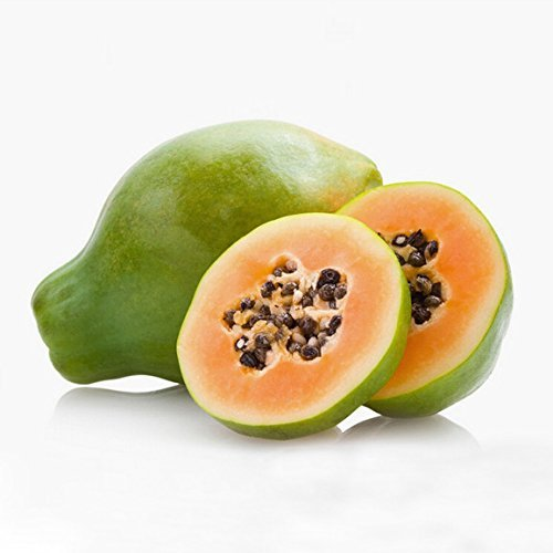 10pcs Pawpaw Graines Papaye Fruit LŽgumes Bonsai