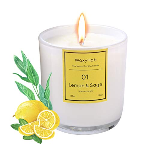 WaxyHab Scented Candles Strong Fragrance Lemon and Sage Jar Candle,Smokeless Natural Soy Wax with Essential Oil,Aromatherapy Candle for Stress Relief 7.76 oz ,30 Hour Long Lasting