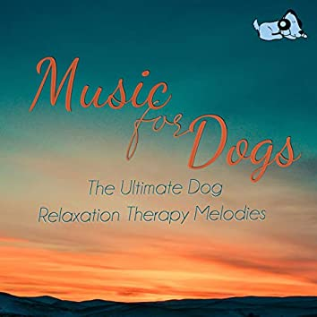 Music For Dogs : The Ultimate Dog Relaxation Therapy Melodies