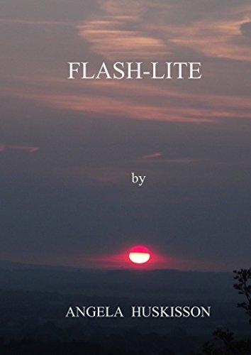 Flash-Lite (English Edition)