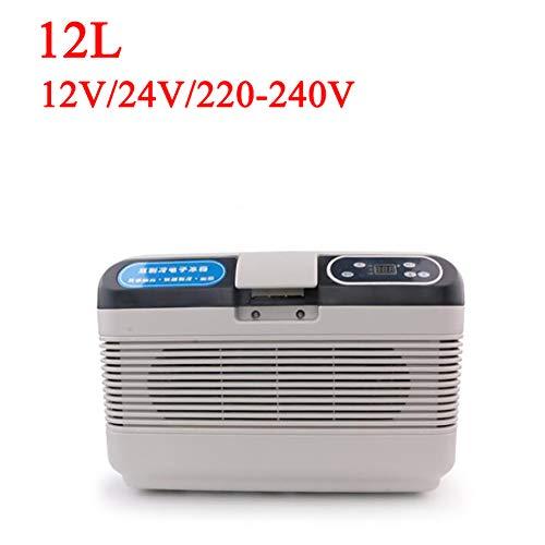 ANJIN DC12V-24V/AC220V-240V Mini-koelkast voor auto en thuis, 12 l, draagbare thermo-elektrische koelbox/verwarmingsbox voor reizen en camping