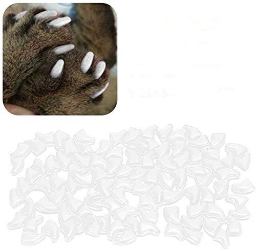 Atyhao Cat Nail Caps, 100Pcs Soft Cat Protector de Cubierta de uñas con Pegamento para Gatos Kitten Safe Anti Scratch(White S)