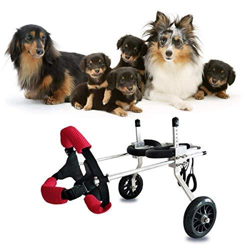 HYRGLIZI Silla de Ruedas para Perros Patas traseras Ajustables Rehabilitación para discapacitados Paseo asistido por Perros Dos Ruedas Silla de Ruedas Ajustable para Mascotas para Gatos Adultos Perro