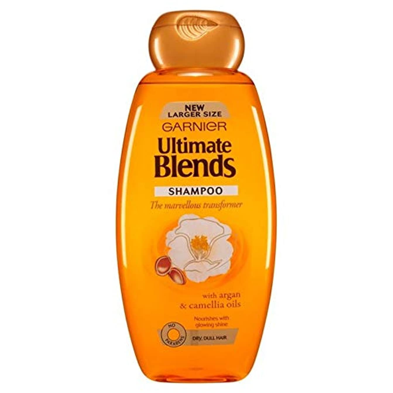 [Garnier ] ガルニエ究極は、アルガンオイルつやのある髪シャンプー600ミリリットルをブレンド - Garnier Ultimate Blends Argan Oil Shiny Hair Shampoo 600ml [並行輸入品]