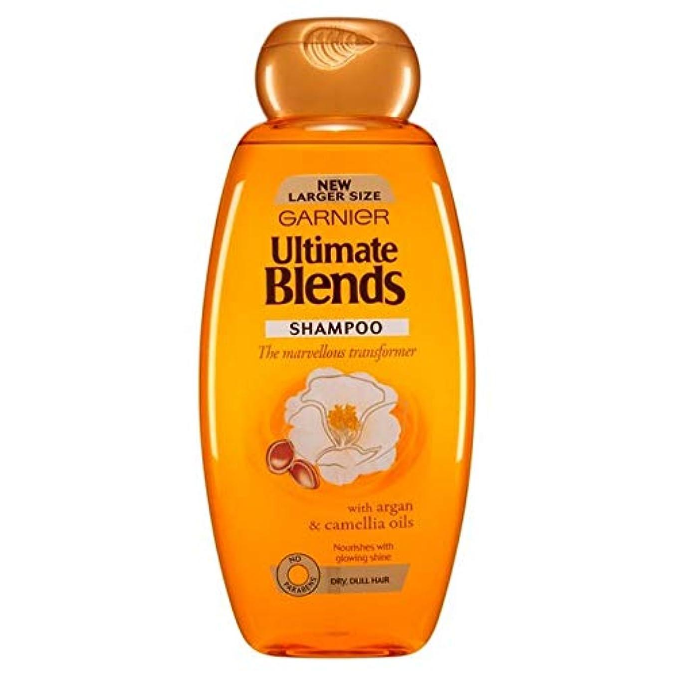 花火メディカル毎回[Garnier ] ガルニエ究極は、アルガンオイルつやのある髪シャンプー600ミリリットルをブレンド - Garnier Ultimate Blends Argan Oil Shiny Hair Shampoo 600ml [並行輸入品]