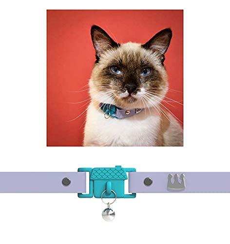 Collari per gatti e gattini Kittyrama. Come visto su VOGUE. Vincitore di premi. Veterinario approvato. Breakaway, ipoallergenico, comodo e morbido. Mauve. Altri stili disponibili