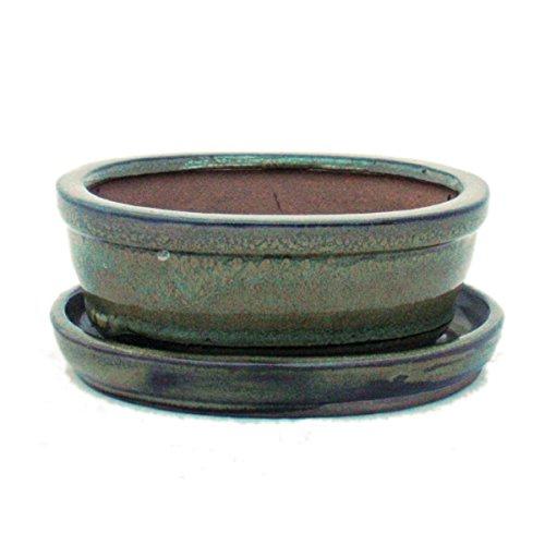 Pot pour bonsaï avec soucoupe - Taille 1 – Marron olive – Ovale - Modèle O7 – Longueur 12 cm – Largeur 9,5 cm – Hauteur 4,5 cm.