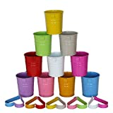 Hemoton Set di 10 Vasi Sospesi in Metallo Sospesi per Piante/Vasi da Fiori con Foro di Drenaggio Secchio per Fiori Recinzione per Balcone Ornamenti per La Casa da Giardino