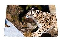 26cmx21cm マウスパッド (ユキヒョウ座る捕食者) パターンカスタムの マウスパッド