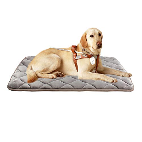 furrybaby Dog Bed Mat Crate Mat with Anti-Slip Bottom Machine Washable Pet Mattress for Dog Sleeping (L 42x28'', Sliver Grey Mat)