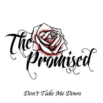 Don't Take Me Down