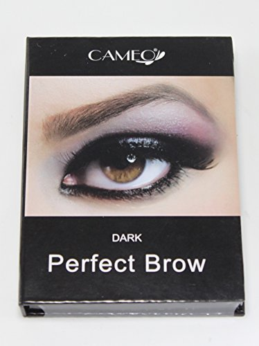 Cameo Cosmetics Perfect Brow- Dark Brown Eyebrows Color Brush Stencils Tweezer Brush